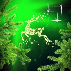 Weihnachtslotterie ElGordo